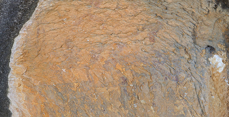 Sector dret de la cavitat inferior de Cova Centelles, color real.