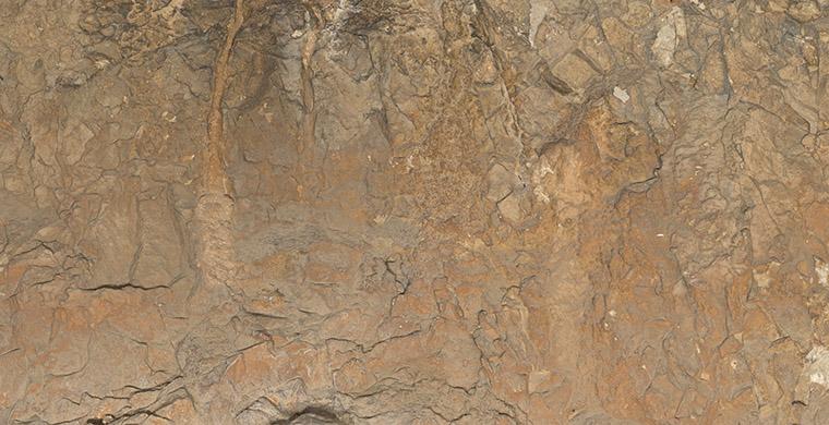 Cova Alta del Lledoner