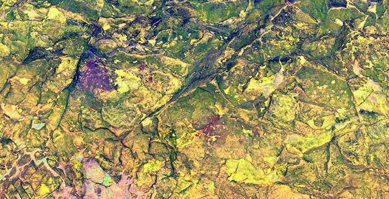 Gigapixel image of the left area of Cova Alta del Lledoner, false color.